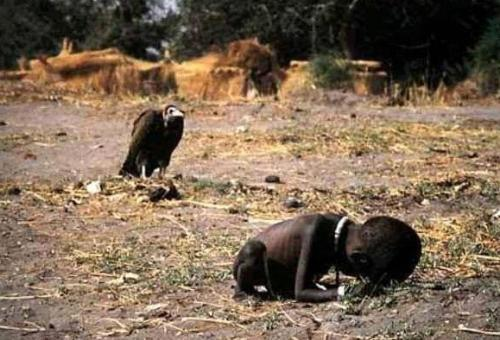 bnw-vulture-waits-for-child-to-die